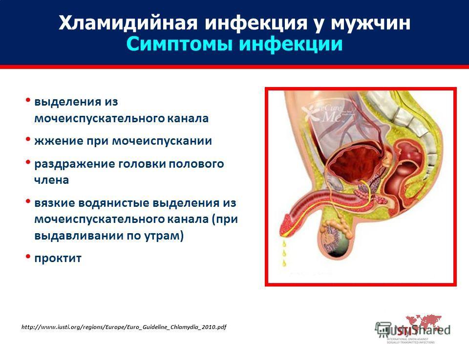Из за простатита могут быть выделения антибиотики при бактериальном хроническом простатите